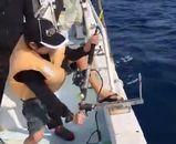 海釣りする長男