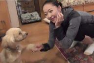 愛犬と畠山愛理