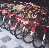 近藤真彦のフラッシャー自転車のコレクション