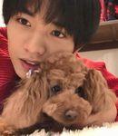 中島健人と愛犬ボニータ
